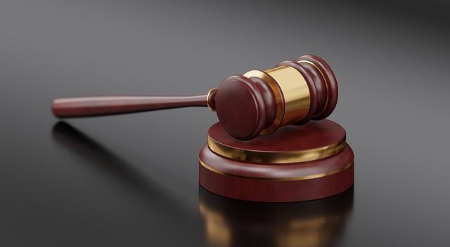 Rechtsanwalt Dr Brunner 1040 Wien strafrecht